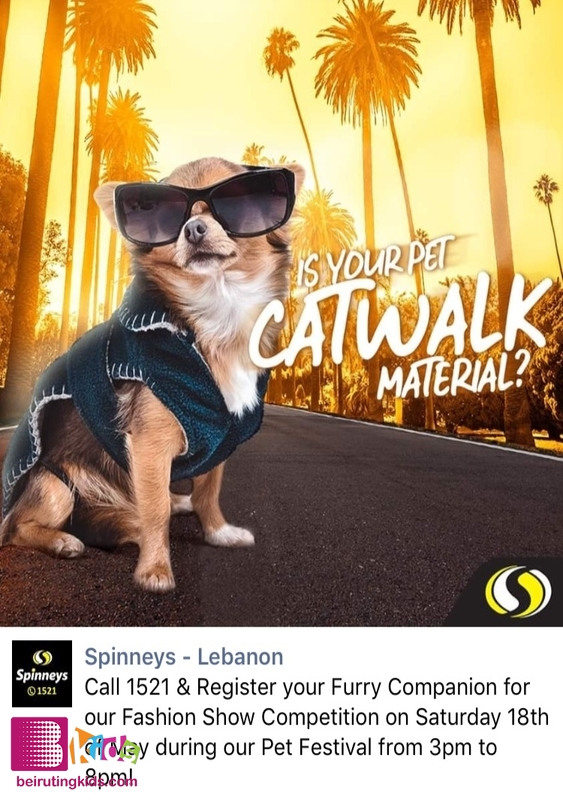 Activity Jbeil-Byblos Activities The Pet Festival At Spinneys Hazmieh Lebanon